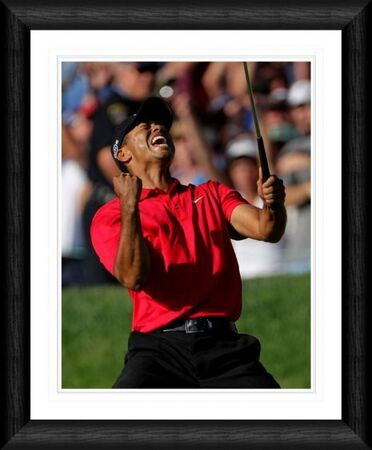 tiger woods celebration shot framed print