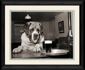 Hair of the Dog 20x16 inch Framed Print