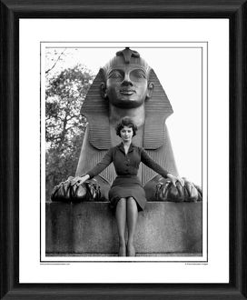 Sophia Loren Framed Photographic Print