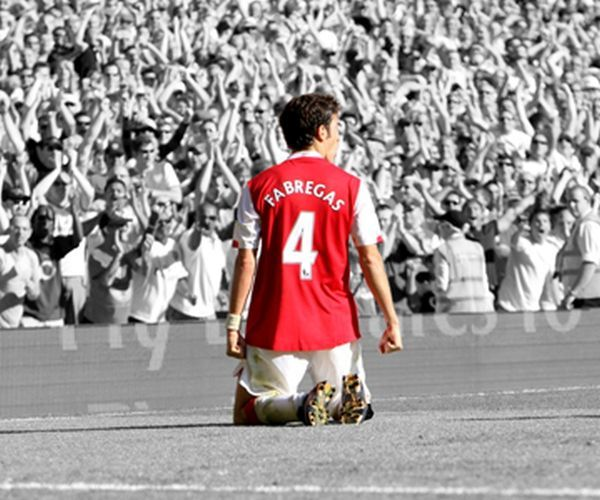 Cesc Fabregas of Arsenal FC 20x16 inch Box Mounted Canvas Print