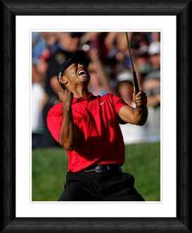 golf/tiger woods celebration shot framed print